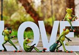 freetoeditl love frogs funny green freetoedit