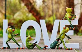 #FreeToEditl #love #frogs #funny #green
