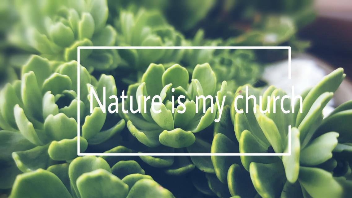 #nature #mygarden #myinspiration #flowers #quotes