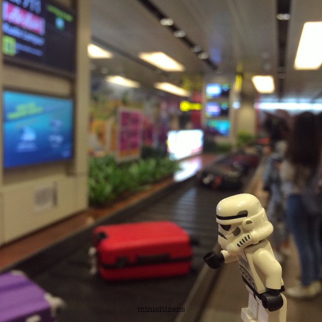 Finally my luggage has arrived 🙂 Hello Singapore! 😎  #singapore #changi #airport #traveller #travelsingapore #traveltheworld #stormtrooper #stormtrooperlife #starwars #starwarsgeek #geekedup #geekgirl #lego #legostarwars #legostormtrooper #legophotography #lego_hub #brickcentral #bricknetwork #toypops #instalego #legogram #legolife #legofan #justanothertoygroup #afol #minifigures #legominifigure #saturyay #minicitizens