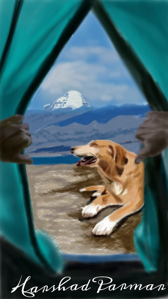 #wdpcamp #View from tent mt. Kailash #dog#petsandanimal#mountain#nature#digitalart  Hope u all like it my friends, thanx in advance for ur likes, votes & repost.