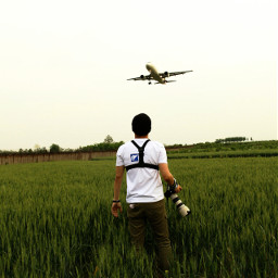 airplane freetoedit