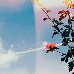 sky cloud blue edit kodak freetoedit