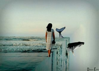 edgeoftheworld whale freetoedit