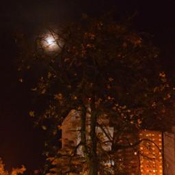 freetoedit night moon darkness dark