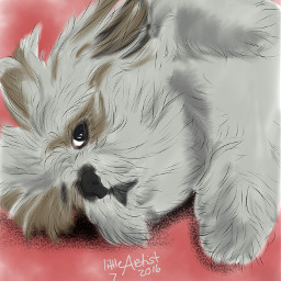 digitalart sketchbookpro painting portrait dog freetoedit
