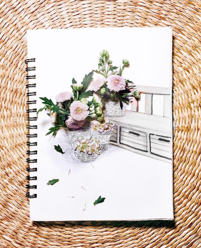 Chrysanthemum harvest #Vietnam #harvest #tiny #chysanthemum #draws #arrangment #byTora❤️