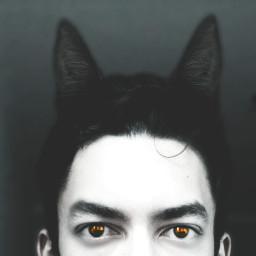 wapcatears cat eye dramaeffect lifestyle
