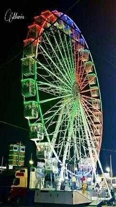 night lights fair