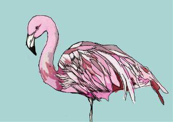 freetoedit flamingo pink blue