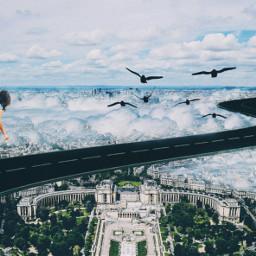 FreeToEdit remix remixed edited doubleexposure birds madewithpicsart clouds skateboard girl skateboardgirl