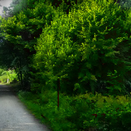 nature travel brandenburg